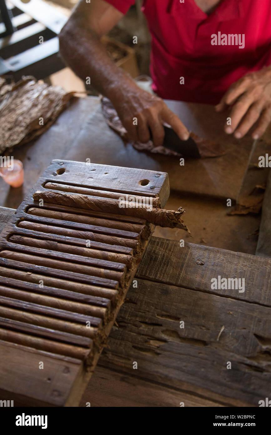Rouler des cigares à l'Alejandro Robaina plantation de tabac, province de Pinar del Rio, Cuba Photo Stock