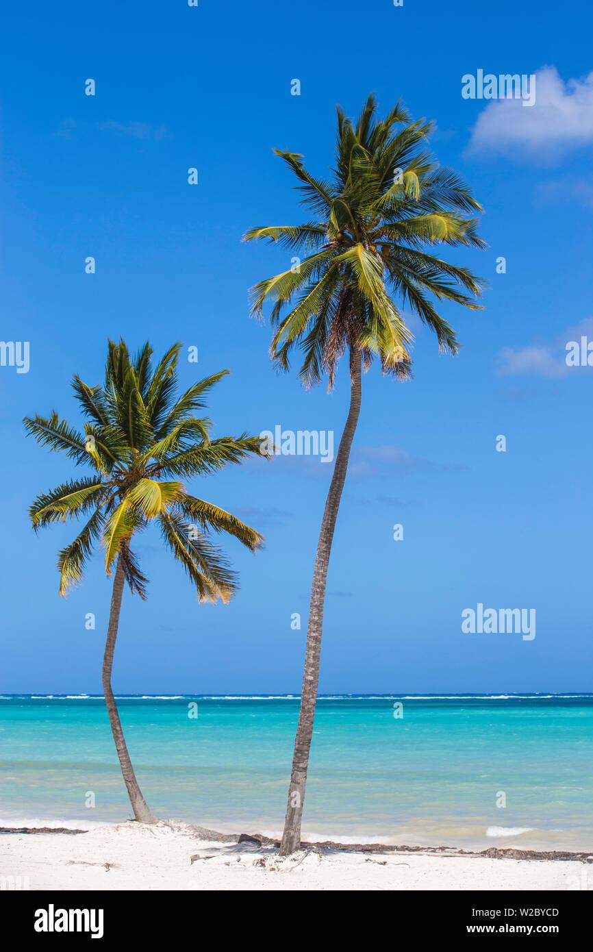 République dominicaine, Punta Cana, Playa Bavaro Beach Banque D'Images