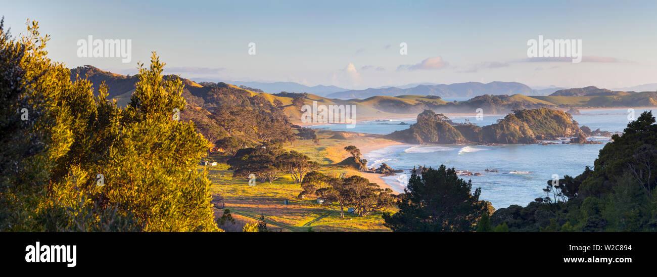 Northland Littoral, Whananaki, Nortland, île du Nord, Nouvelle-Zélande, Australie Photo Stock