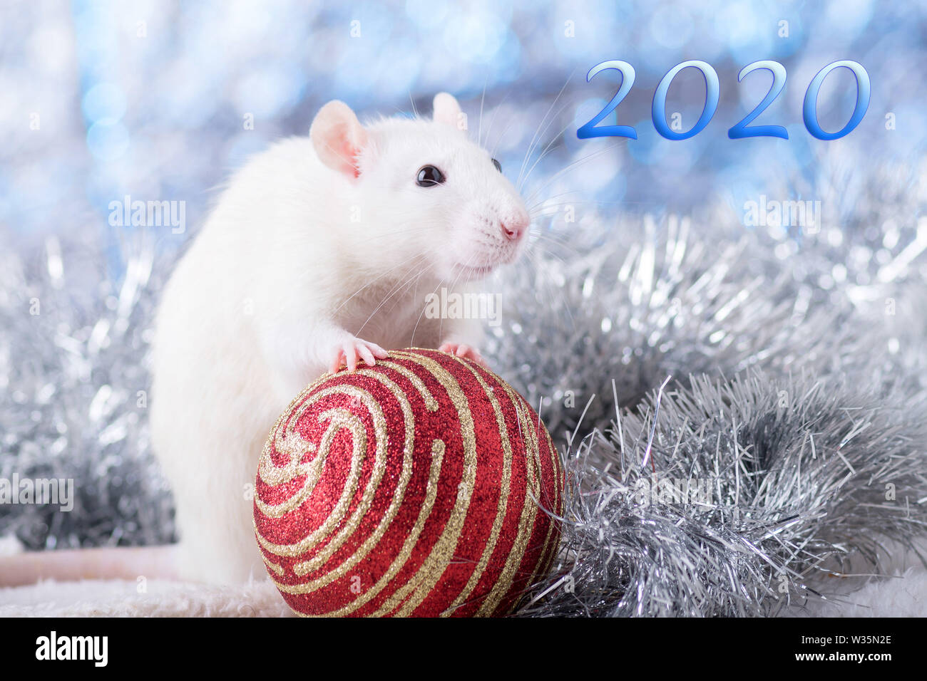 calendar 2020 photos calendar 2020 images alamy. Black Bedroom Furniture Sets. Home Design Ideas