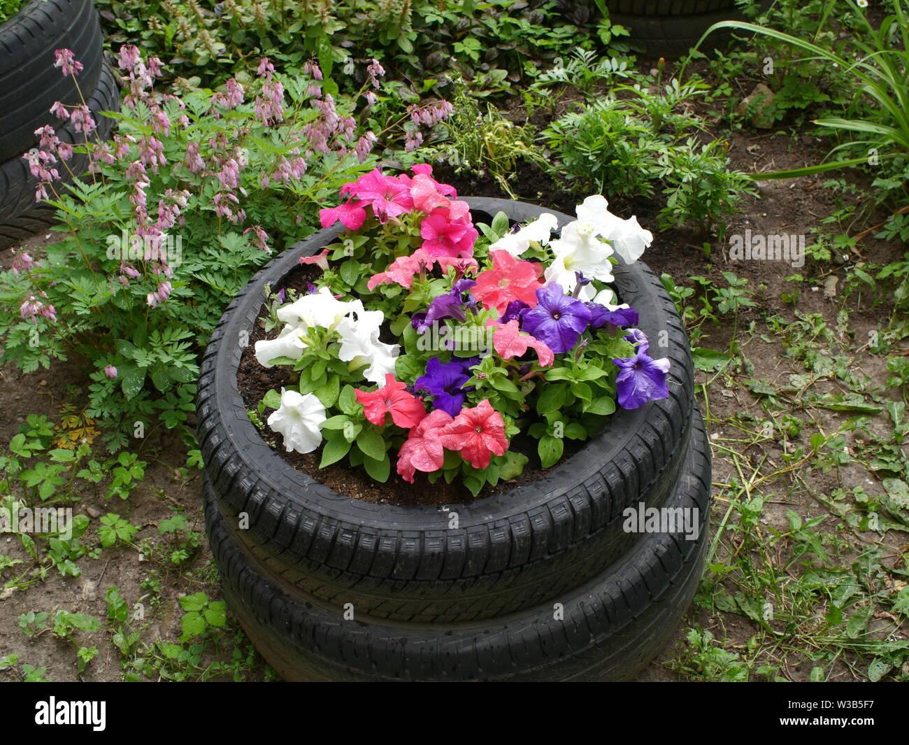Pot De Fleur Avec Des Pneus old tire plant pot photos & old tire plant pot images - alamy