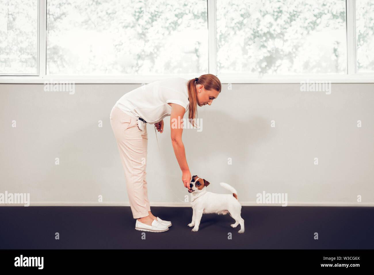 Soin de chien. Aimant beaucoup les animaux femme prendre soin de mignon chien debout près de window Photo Stock