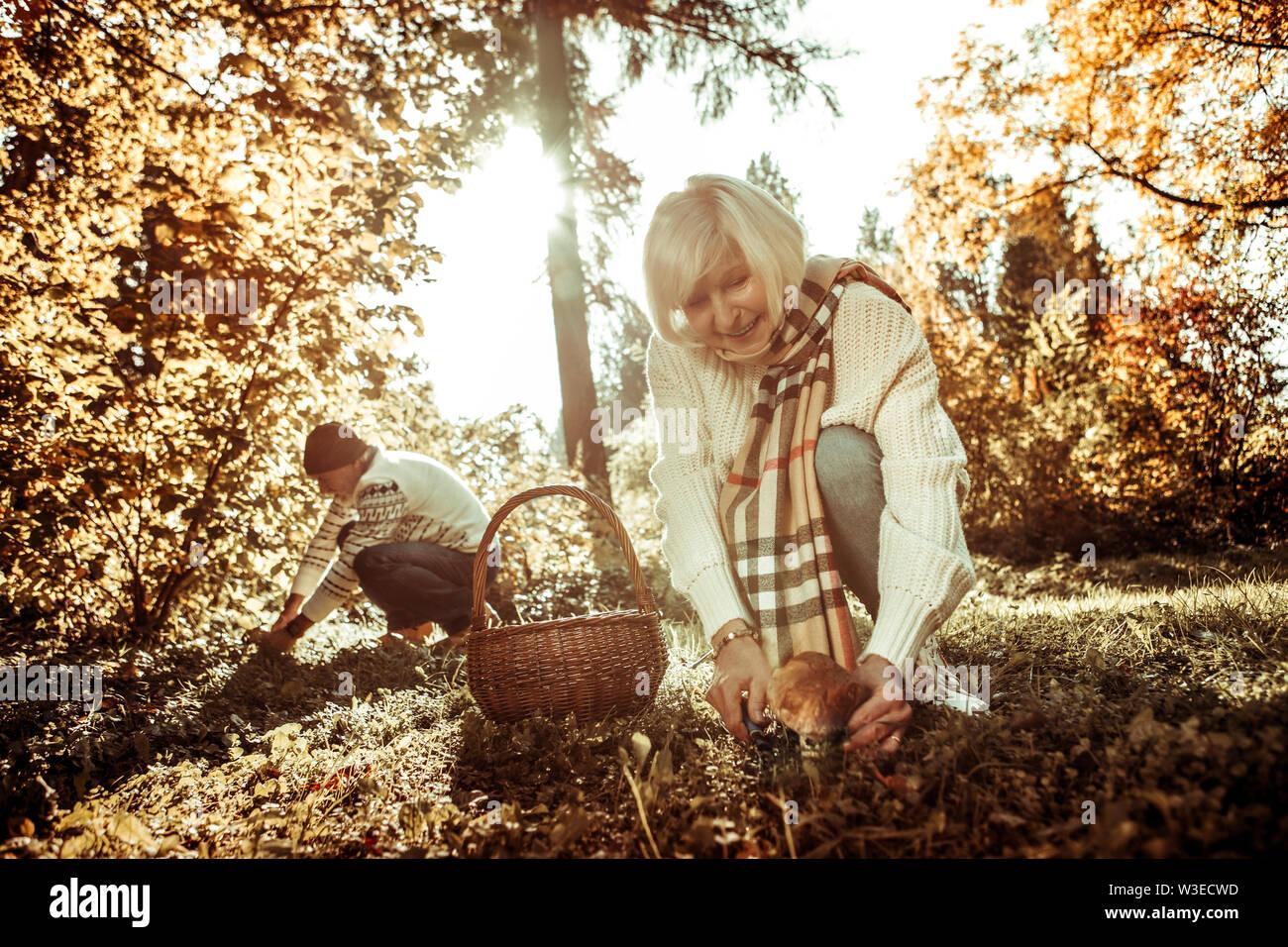 Femme souriante va couper un gros champignon. Photo Stock