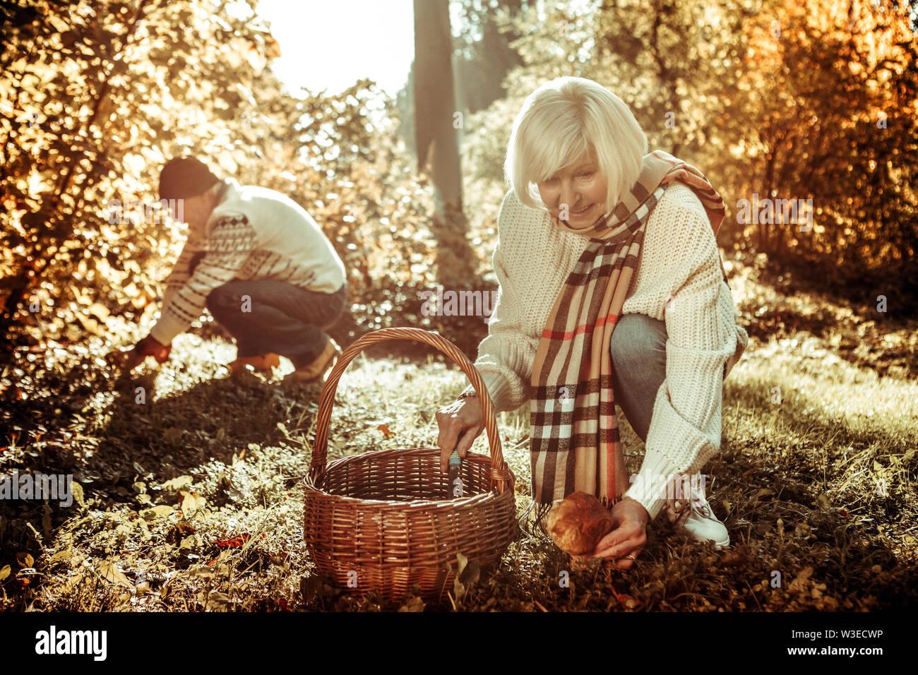 Une femme âgée et son mari la cueillette des champignons. Photo Stock