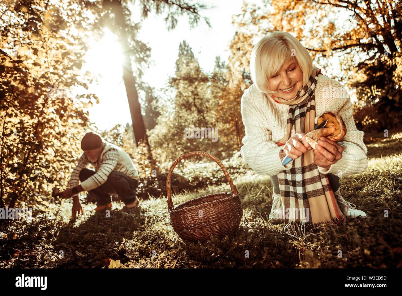 Mari et femme couper les champignons dans la forêt. Photo Stock