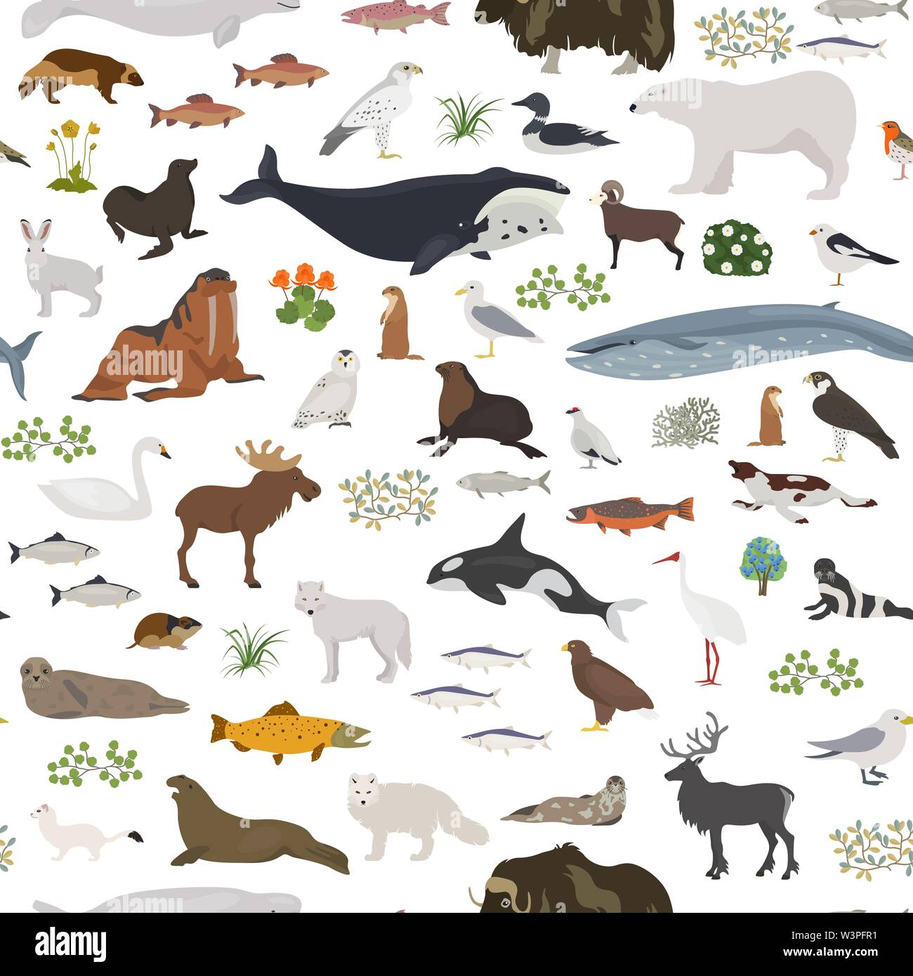 Tundra biome. Carte du monde de l'écosystème terrestre. Les animaux de l'Arctique, les oiseaux, les poissons et les plantes seamless pattern design. Vector illustration Photo Stock