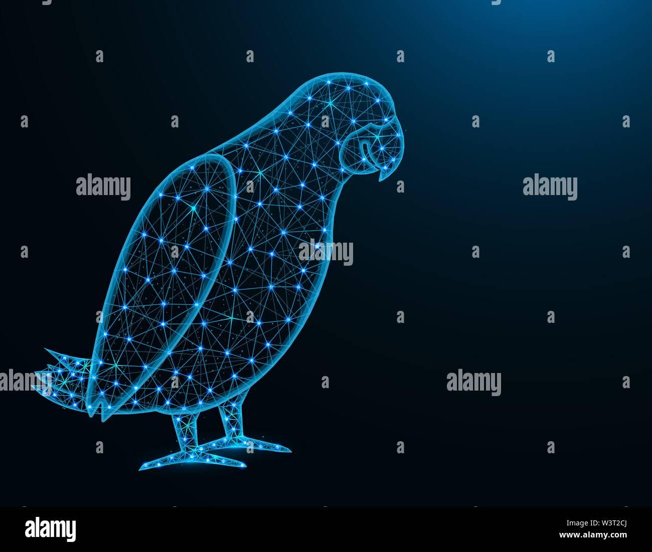 Perroquet Jaco low poly, modèle animal d'Afrique résumé graphiques, d'illustration vectorielle wireframe polygonal d'oiseaux sur fond bleu foncé Photo Stock