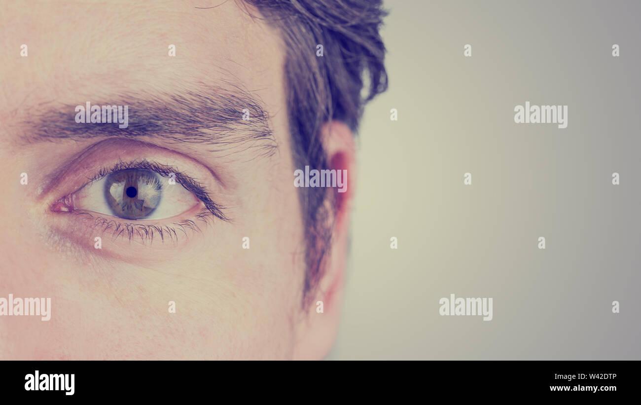 De près de l'œil et de l'oreille d'un homme à la ligne droite montrant sourcil, CIL, iris, et élève de détails sur un fond gris avec copie Photo Stock
