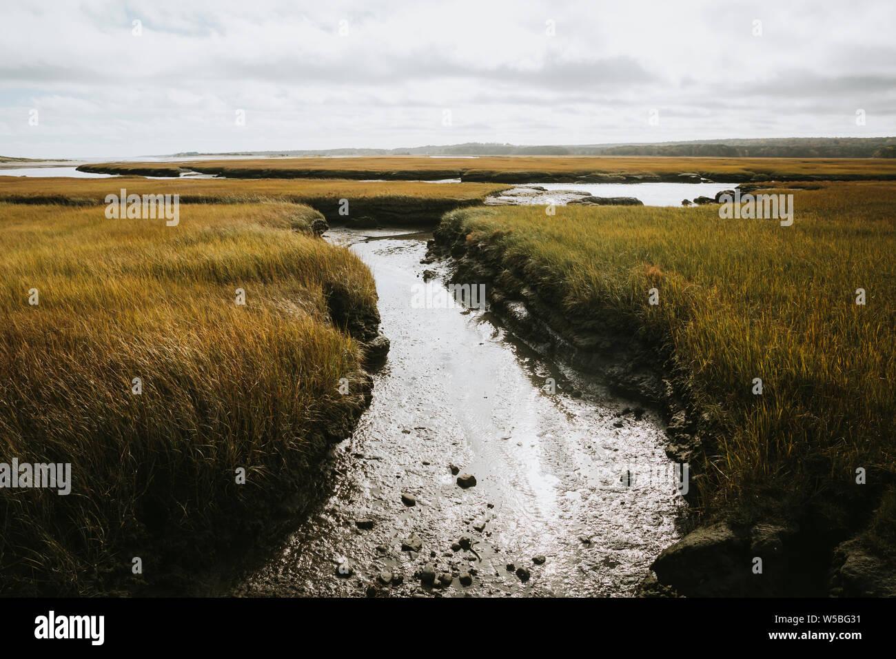 Vue sur l'eau salée des marais Banque D'Images
