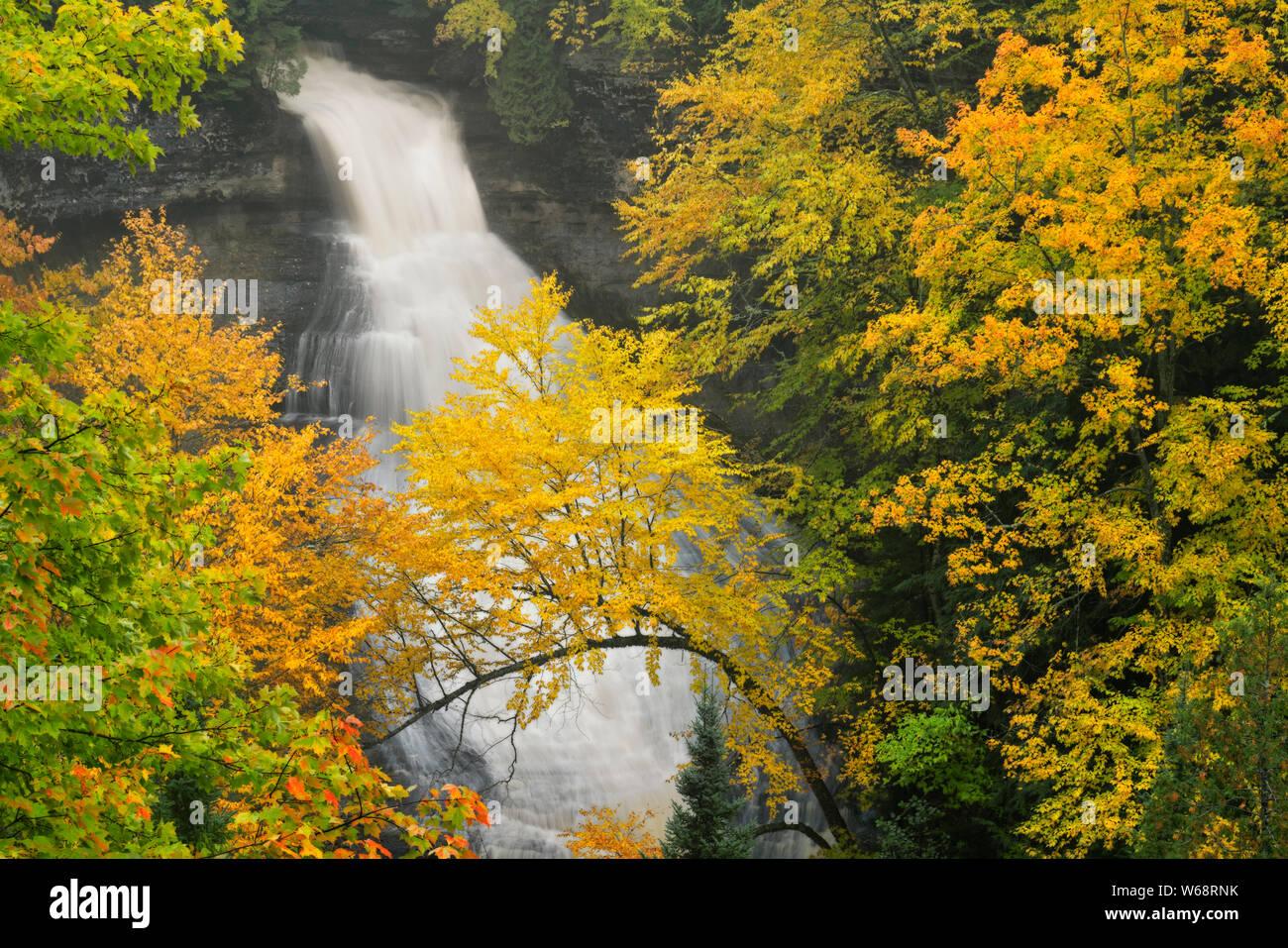 Couleur d'automne Chapelle entoure tombe dans Pictured Rocks National Lakeshore et de la Péninsule Supérieure du Michigan. Banque D'Images