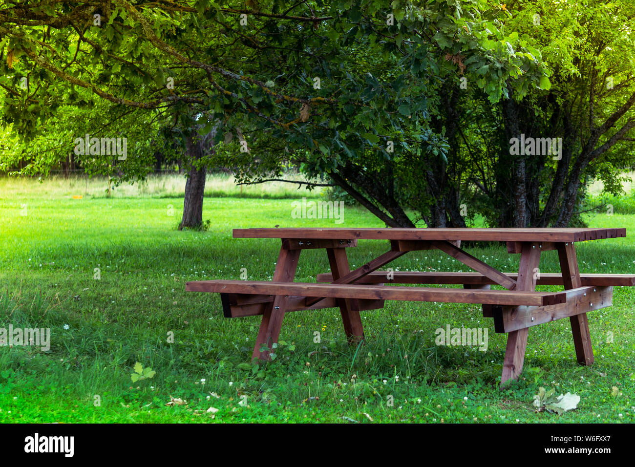 Bench With Table In Meadow Photos & Bench With Table In ...