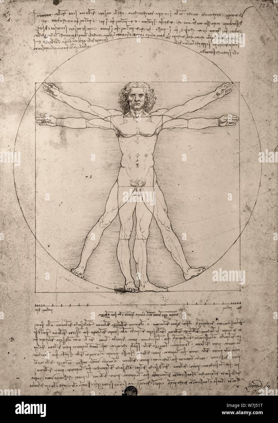 Dessin, Léonard de Vinci, homme de Vitruve, Italie Banque D'Images