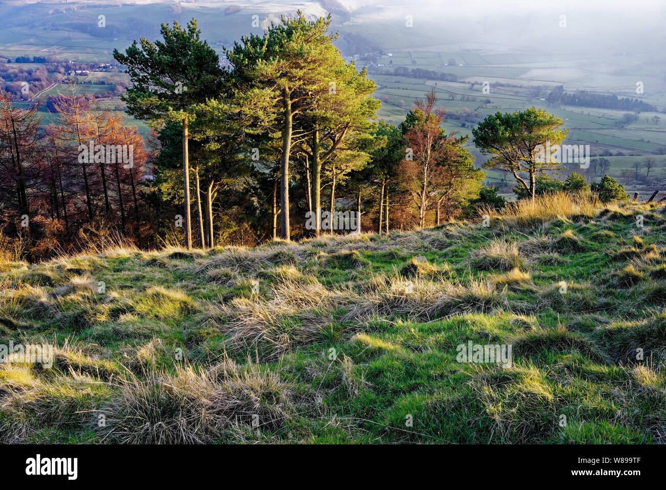 UK,Derbyshire, Peak District,Vue de l'arrière à travers Tor espère Valley Banque D'Images
