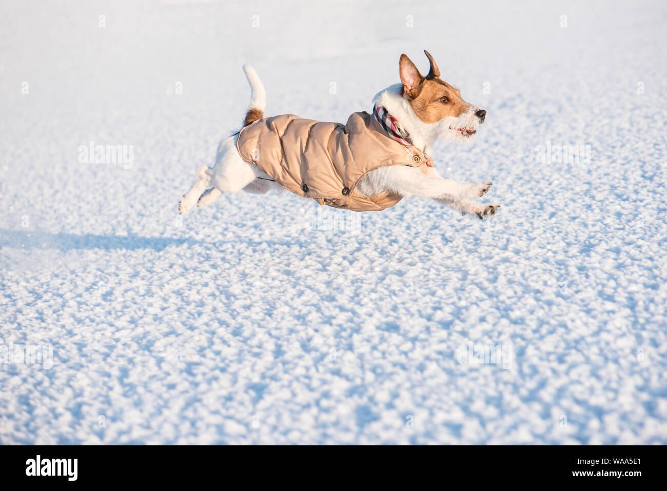Il porte des vêtements chauds d'hiver en cours d'exécution sur la neige (vue latérale) Banque D'Images