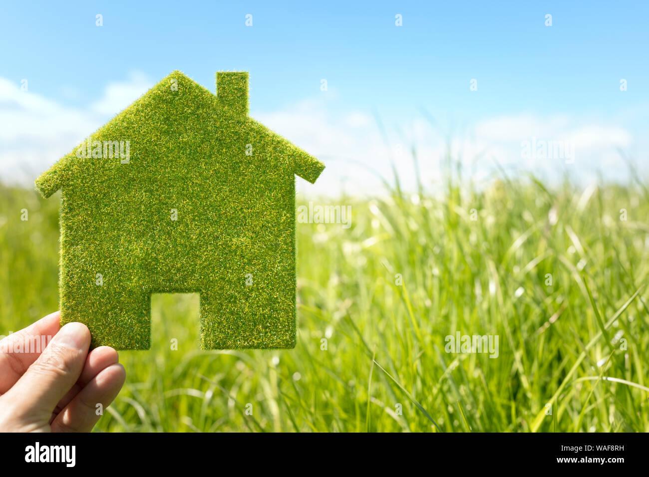 Green eco house en arrière-plan de l'environnement Champ d'herbe pour les terrain résidentiel Banque D'Images