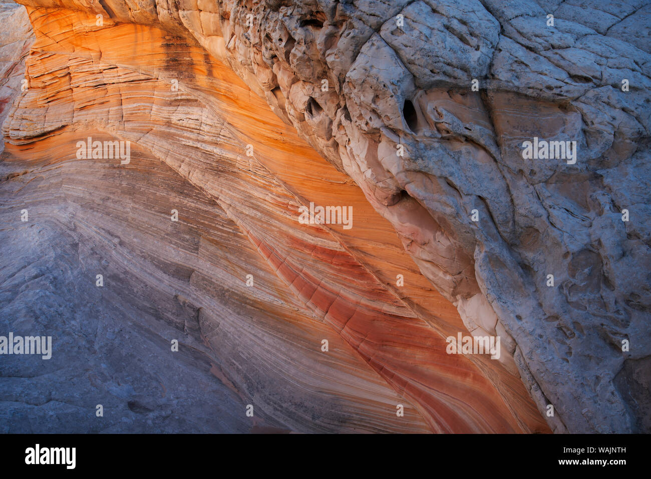 USA, Arizona, Vermilion Cliffs National Monument. Stries dans des formations de grès. En tant que crédit : Don Grall / Jaynes Gallery / DanitaDelimont.com Banque D'Images