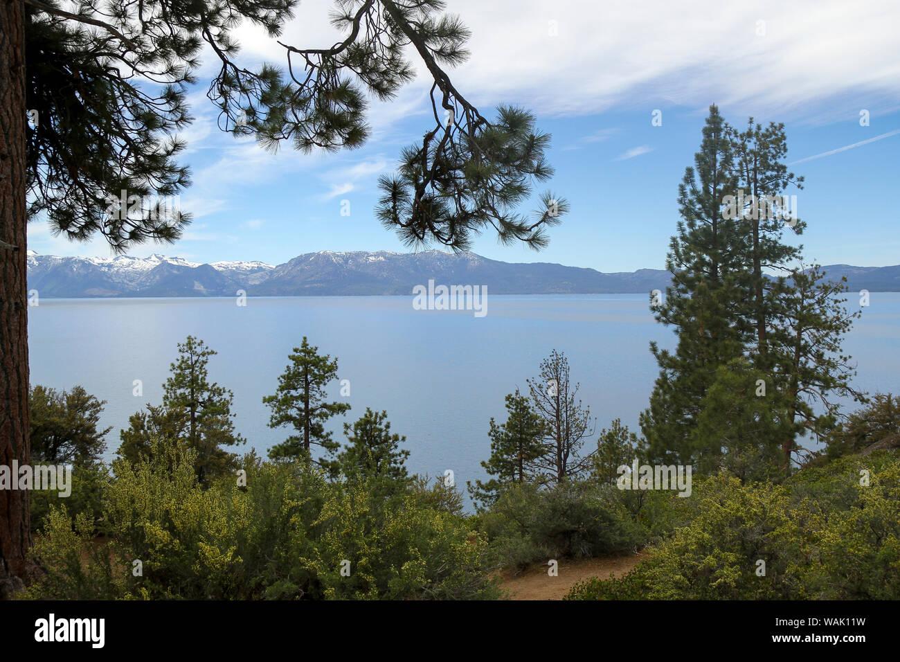Logan Shoals Vista, Zephyr Cove, Lake Tahoe, Nevada, USA Banque D'Images