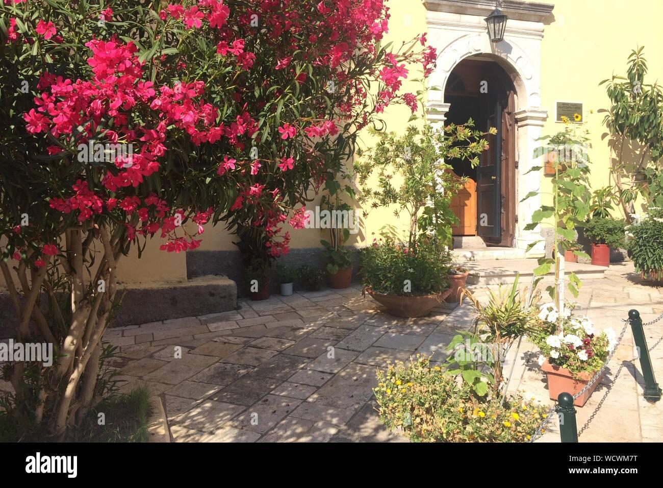 Jardin Fleuri D Une Maison Classique Photo Stock Alamy
