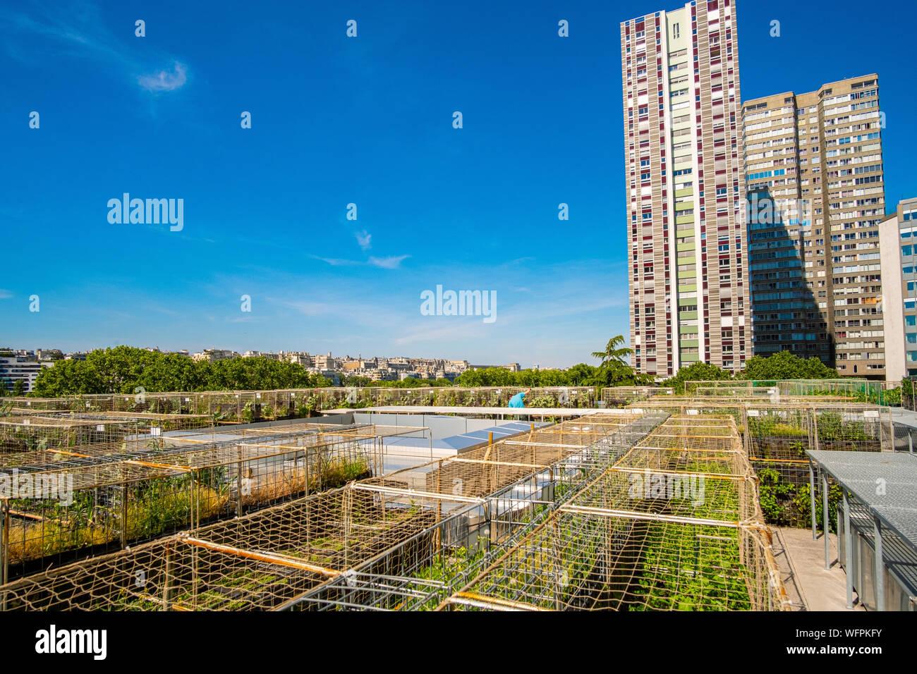 France, Paris, les agriculteurs urbains Pois et l'amour, un nouveau concept de jardin cuisine sur le toit des bâtiments, ici sur l'hôtel Yooma du Front de Seine Banque D'Images