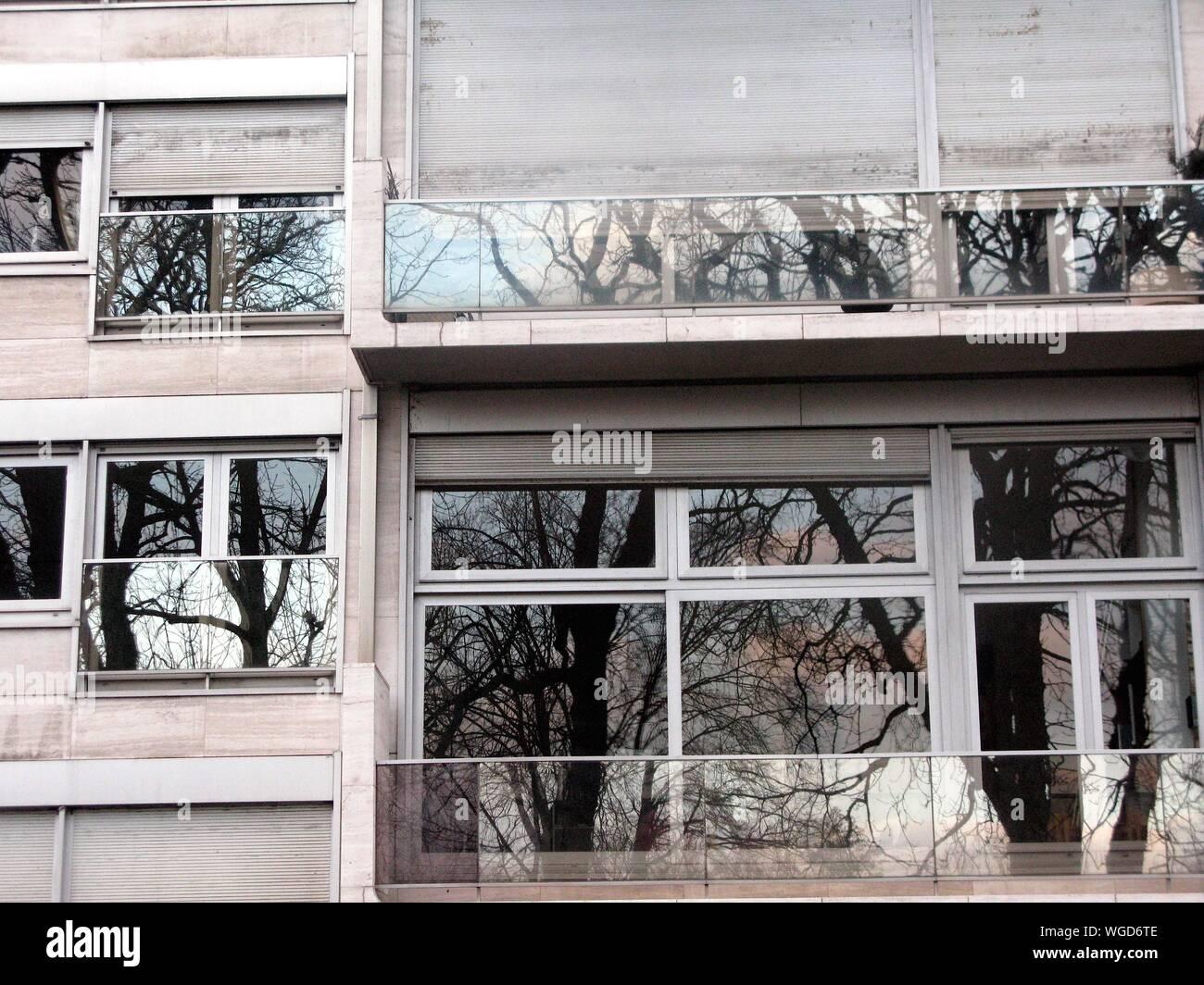 Structure intégrée avec Windows Banque D'Images