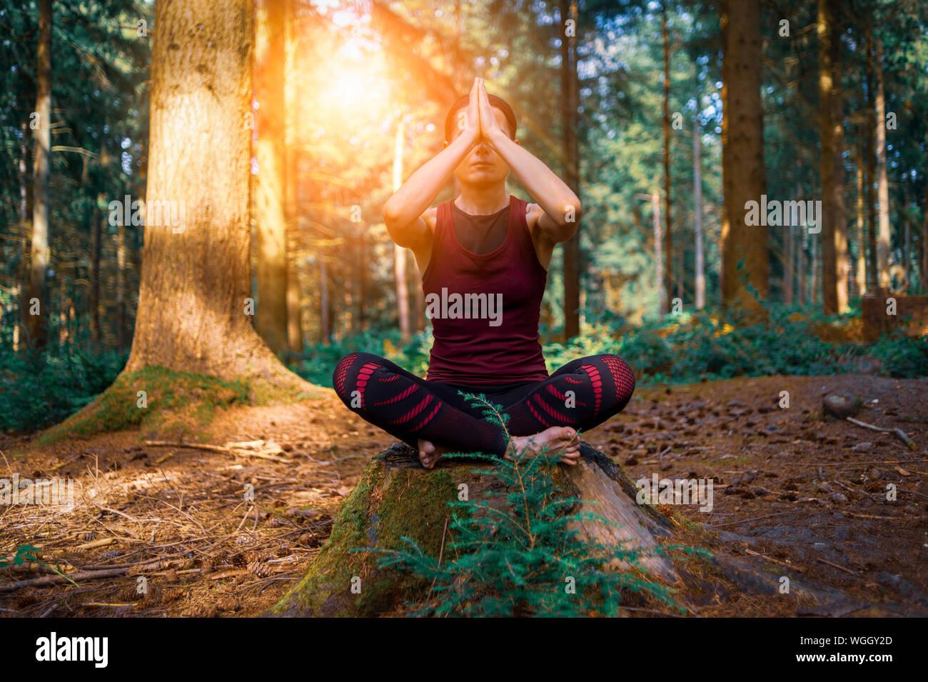 Femme assise sur une souche d'arbre dans une forêt méditer, pratiquer le yoga. Banque D'Images