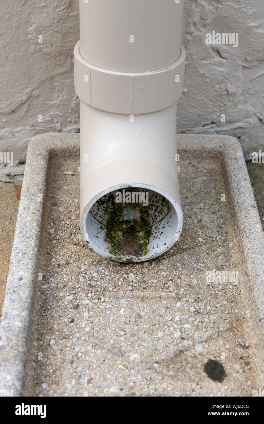 Un vieux tuyau de pvc sur un déversoir en béton avec la moisissure à l'intérieur. Banque D'Images