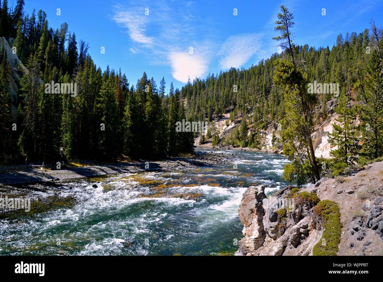 Vue panoramique de la forêt en cascade contre le ciel Banque D'Images
