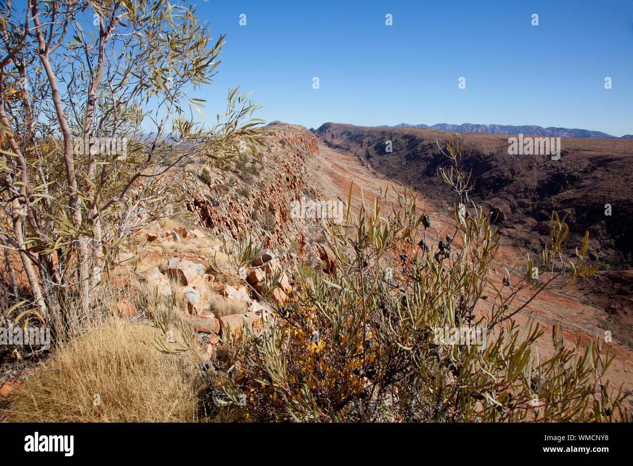 Voir à partir de dénombrements Point, Larapinta Trail, NT, Austrtalia Banque D'Images