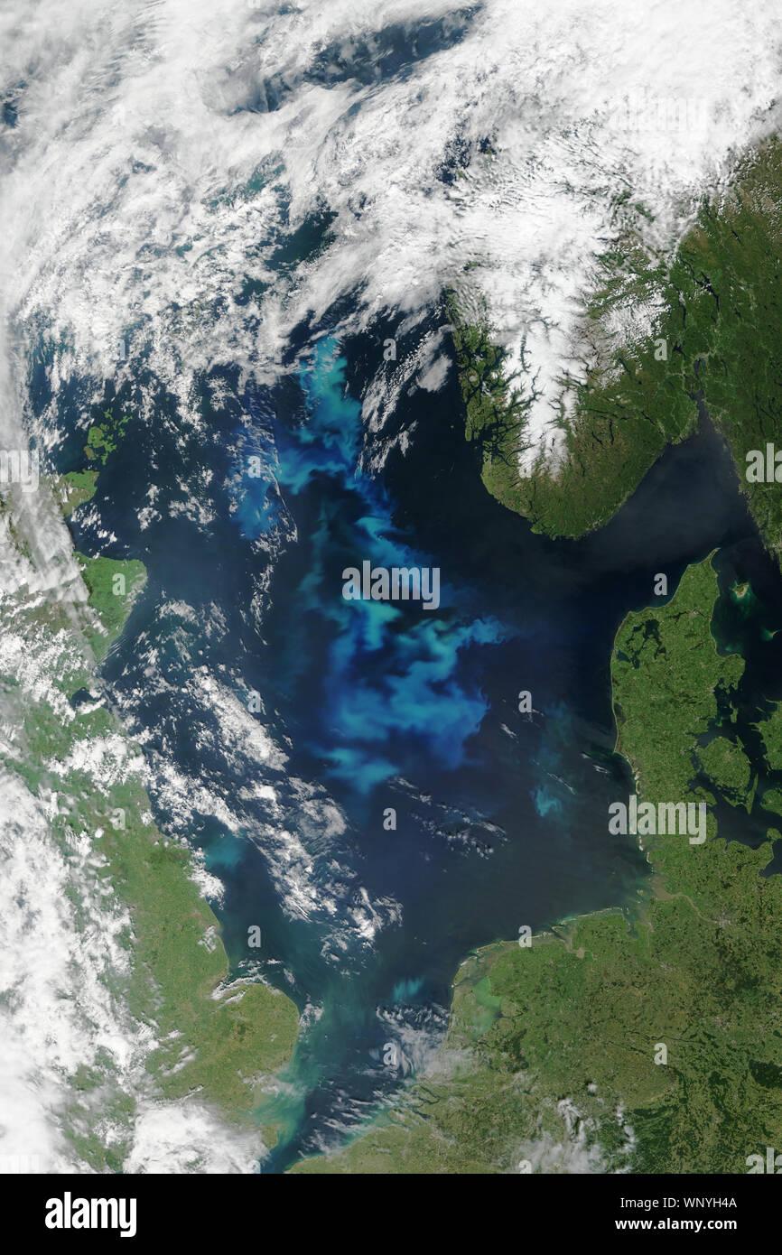 Mer du Nord avec les proliférations de phytoplancton, le Danemark, la Norvège, l'Allemagne, le 6 juin 2015, par la NASA/Jesse Allen/DPA Banque D'Images