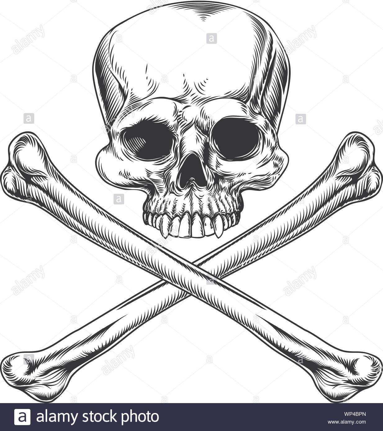 Logo Métal Crâne squelette emblème badge emblem tete de mort skull 95mm x 85mm