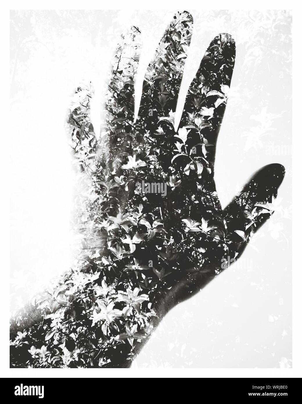 Représentation artistique d'une main humaine d'atteindre la Nature Banque D'Images