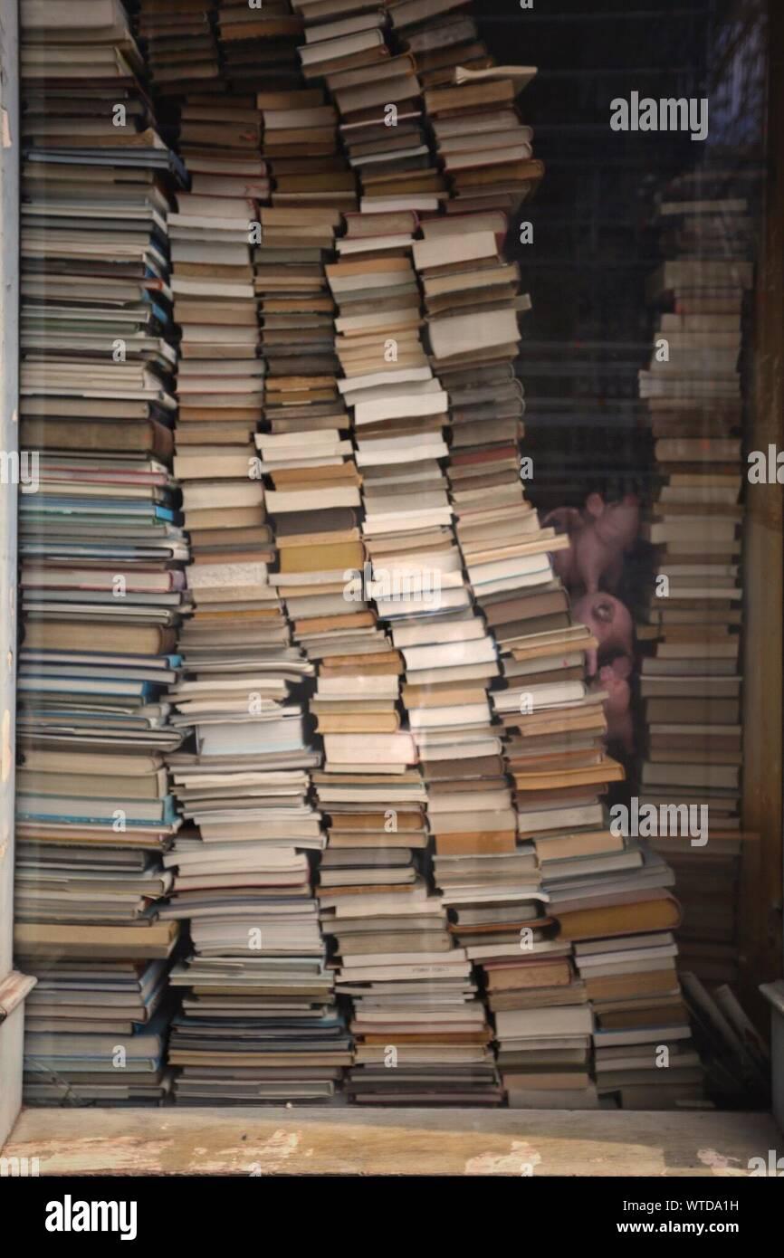 Pile de livres en librairie Banque D'Images