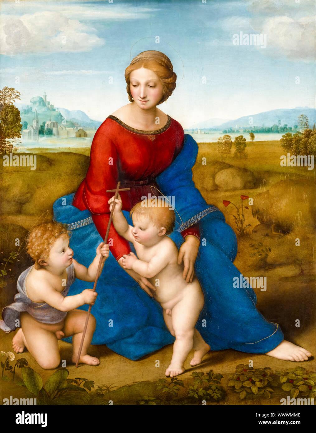 Raphael, Madonna del Prato, Madonna (dans la prairie), peinture, 1505-1506 Banque D'Images