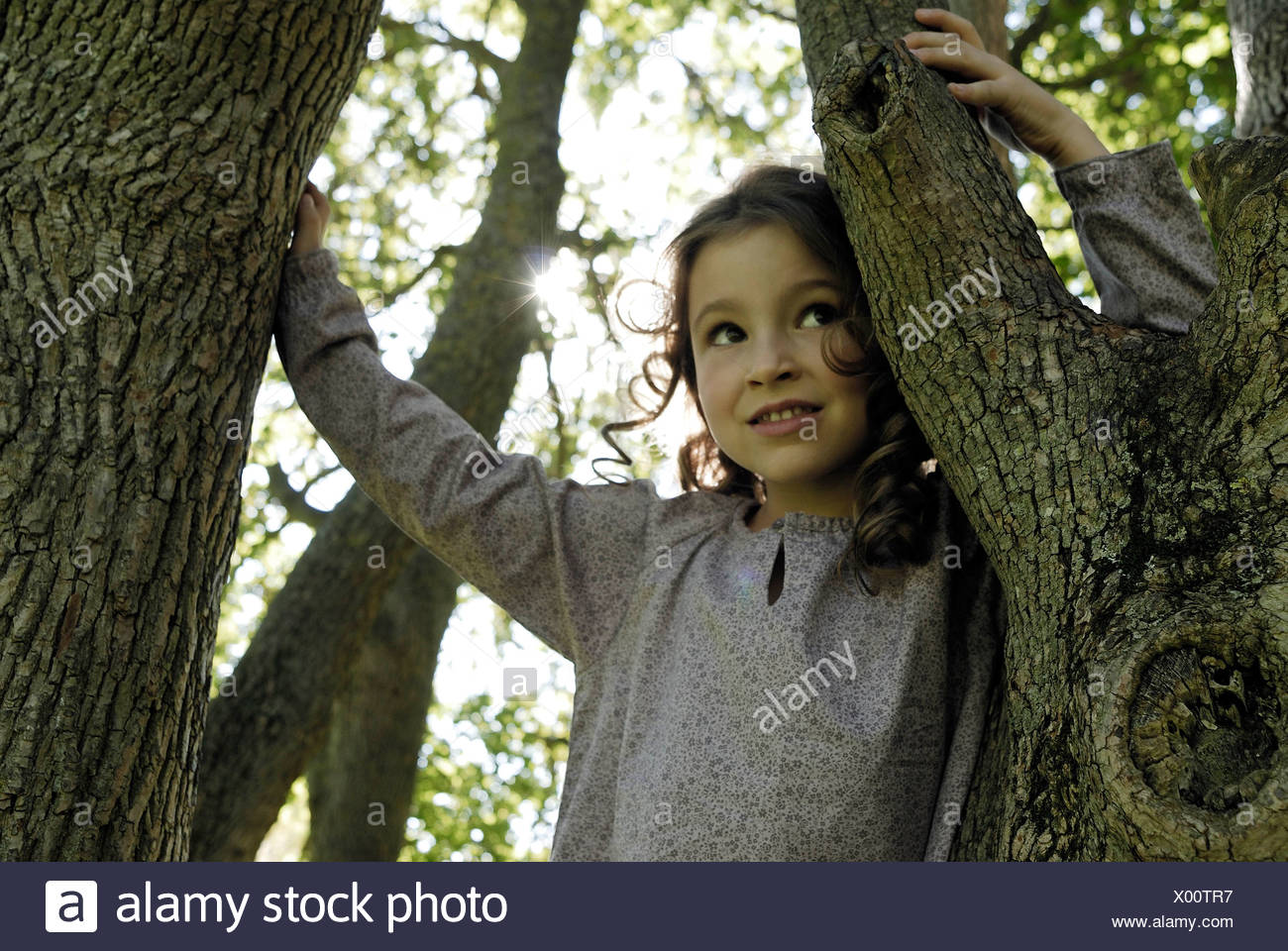 5 ans Girl standing by a tree Photo Stock