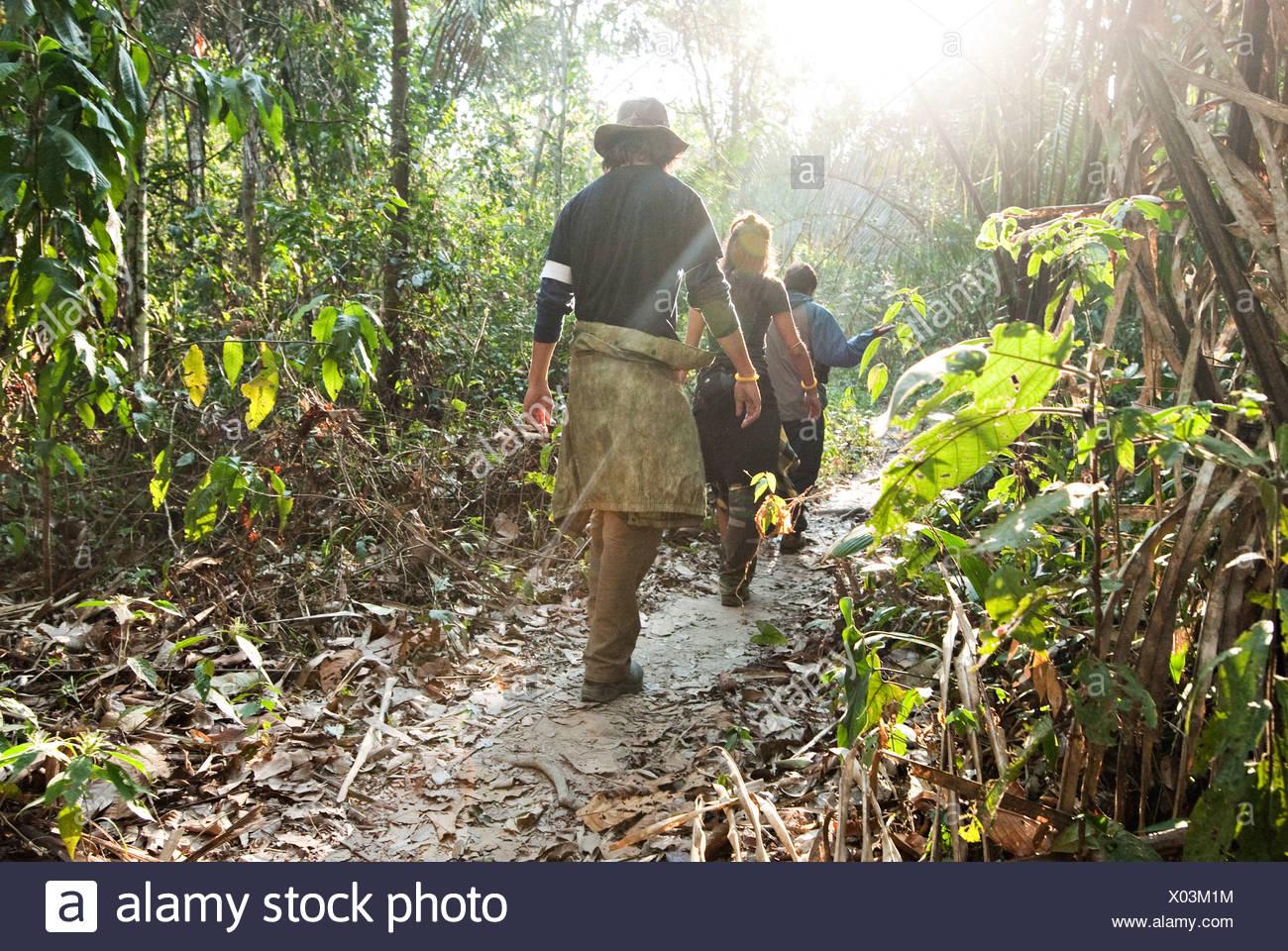 Un homme et une femme marche à travers la forêt amazonienne au milieu matin. Photo Stock