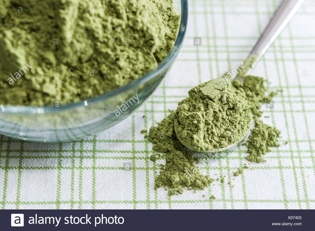 L'agropyre poudre vaisselle Photo Stock
