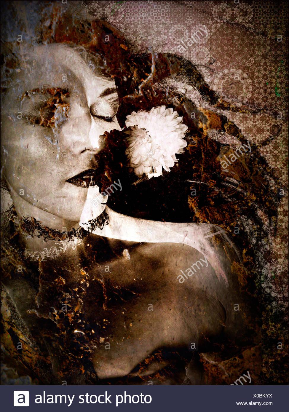 Couche photographique travailler avec ornements de fleurs Photo Stock