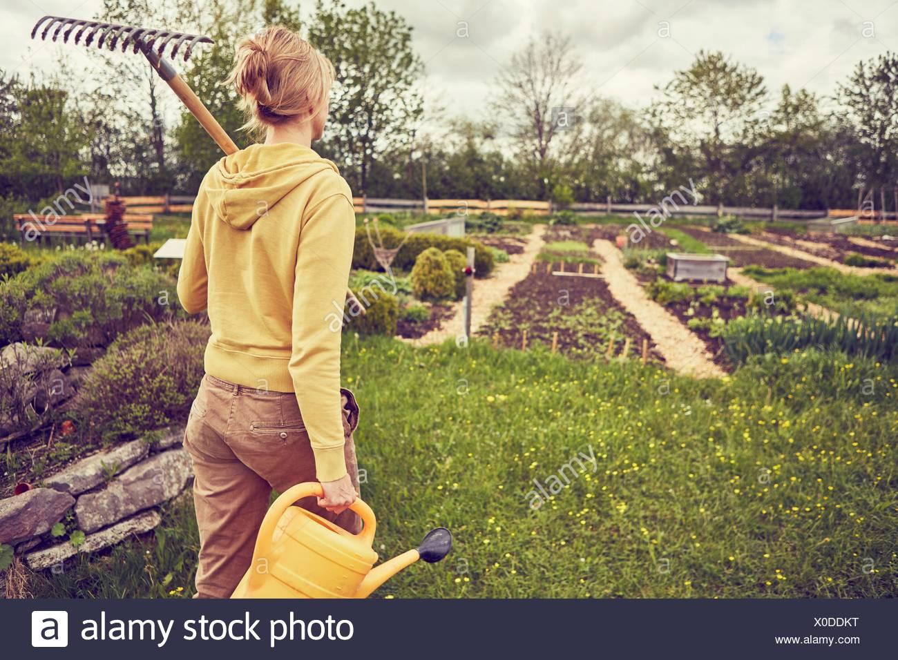 Femme mature, le jardinage, l'exécution et de râteau arrosoir, vue arrière Photo Stock