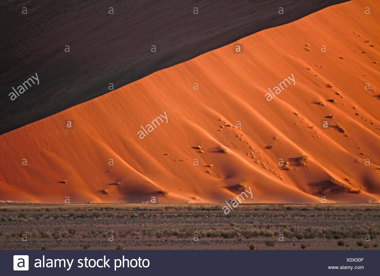 Dune de sable du désert du namib, Namibie, le Parc National Namib Naukluft Sossusvlei, Photo Stock