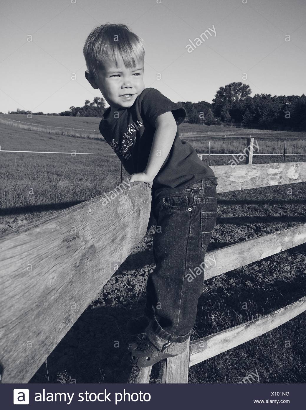 Boy Leaning Over Farm Fence Photo Stock