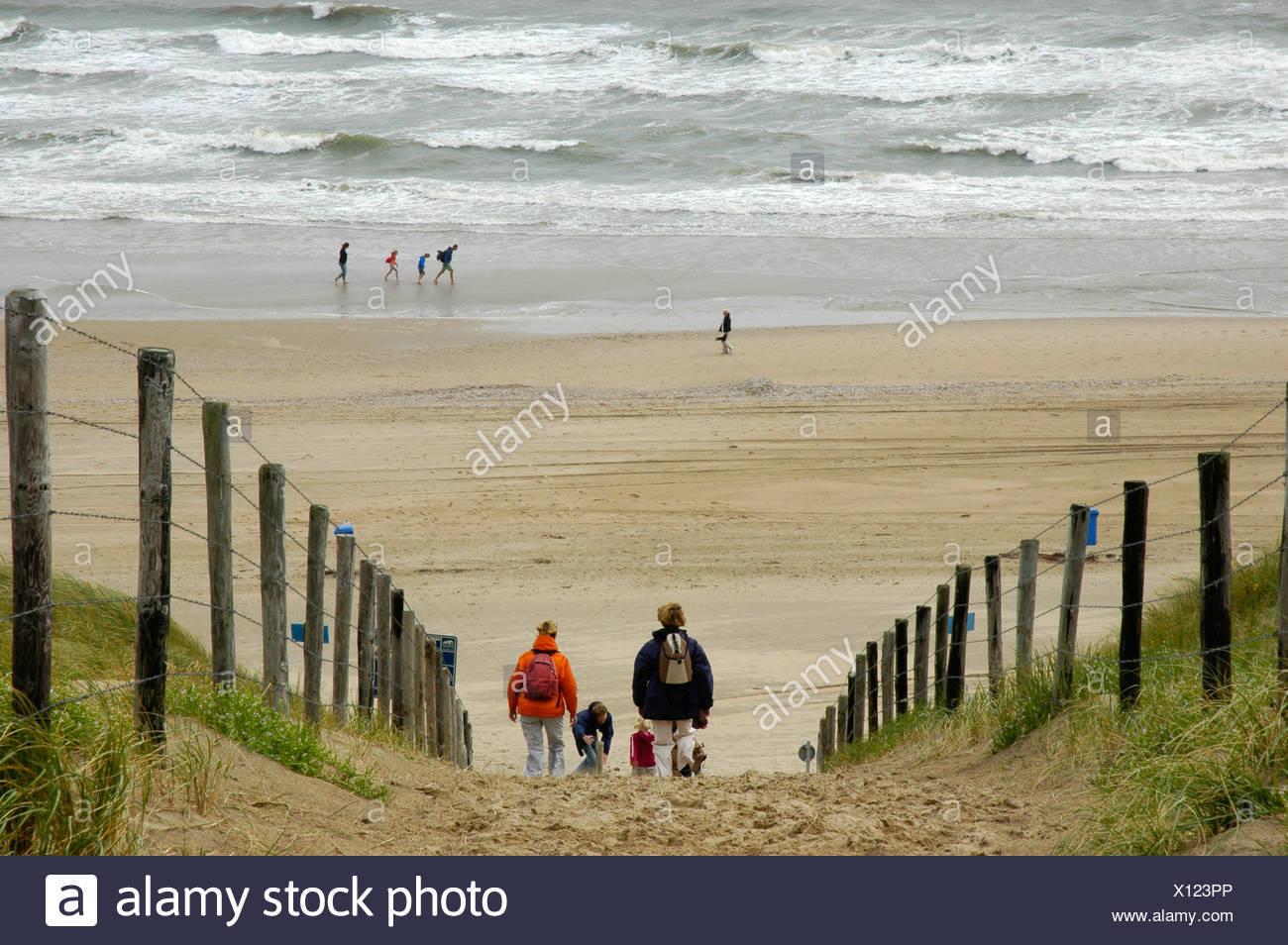 Famille avec enfants est de marcher à travers les dunes de la plage, Katwijk aan Zee, Pays-Bas du Sud, Hollande, Pays-Bas Banque D'Images