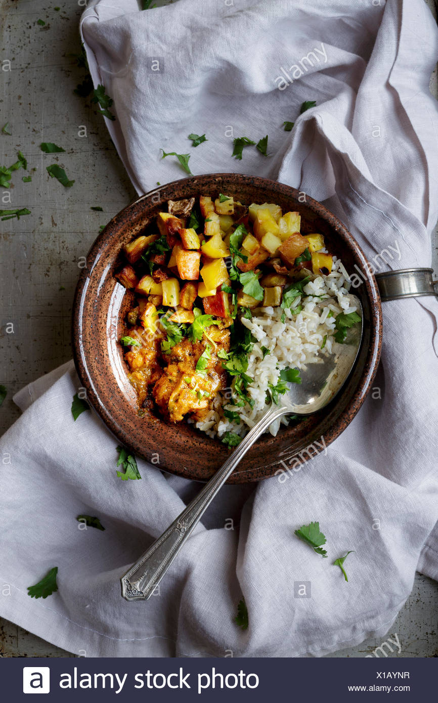 Cuisine indienne Poulet et riz Photo Stock