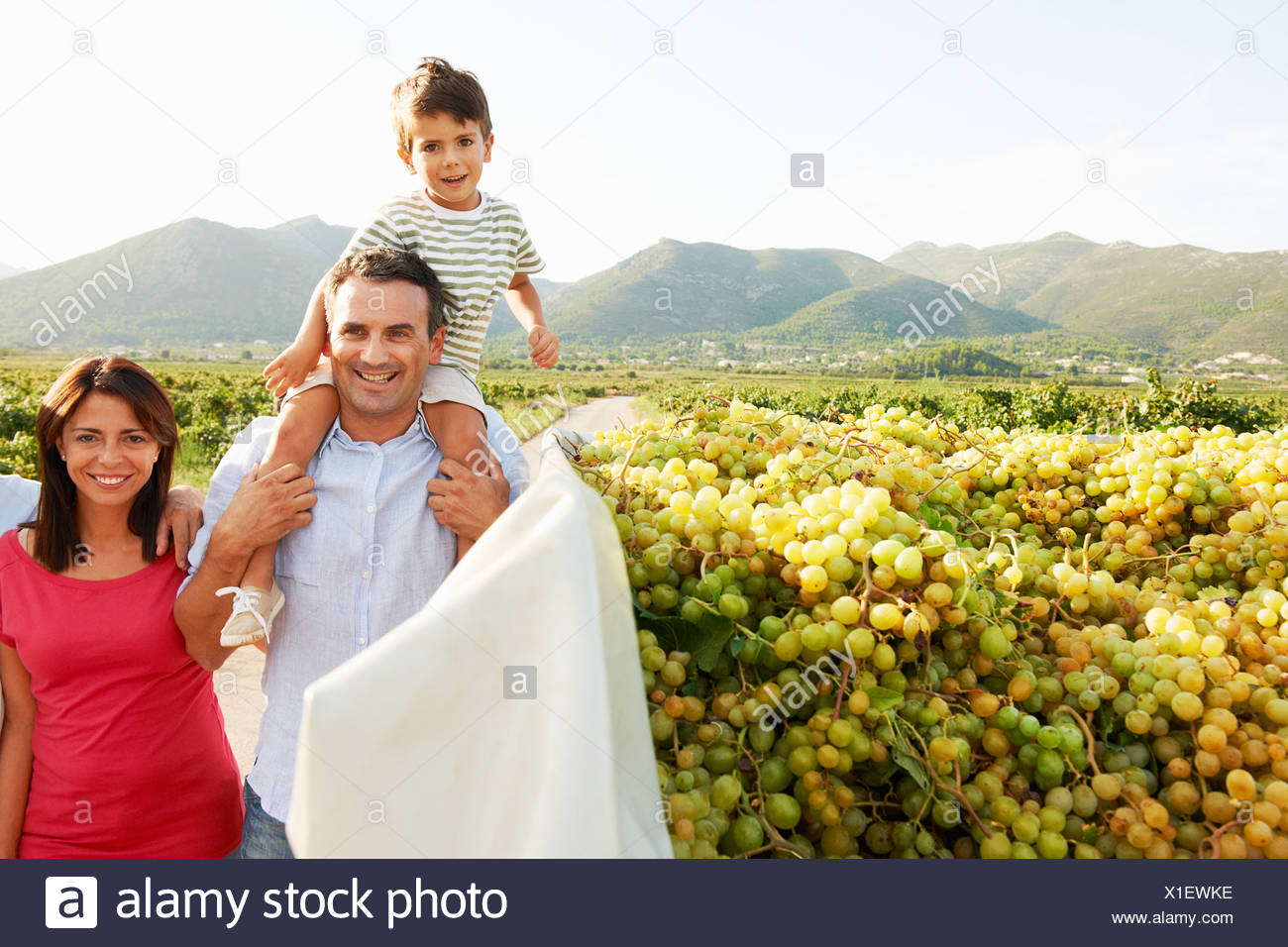 Balades en famille générationnelle vineyard Photo Stock