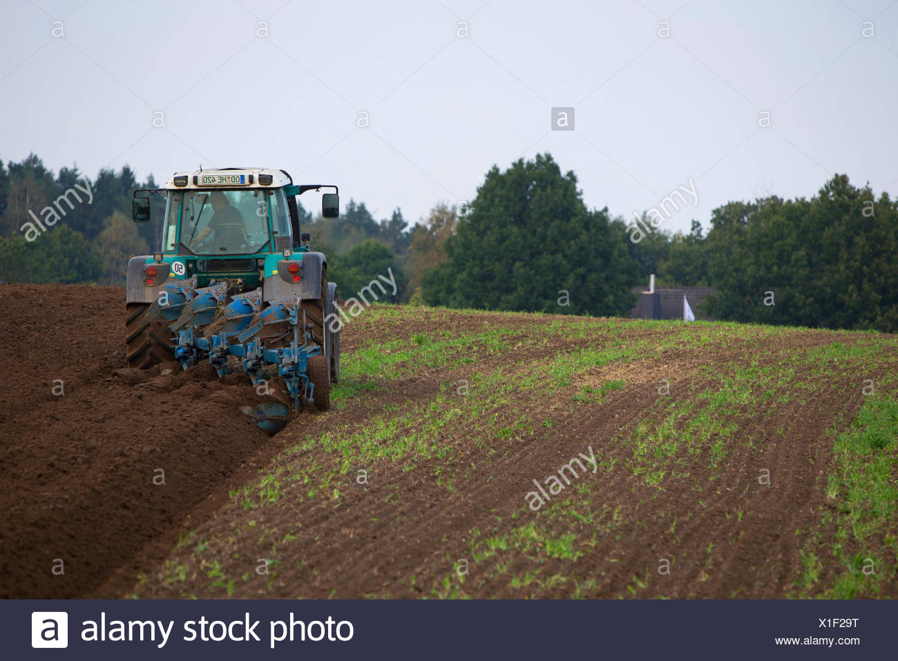 Le tracteur laboure un acre, Allemagne, Schleswig-Holstein Photo Stock