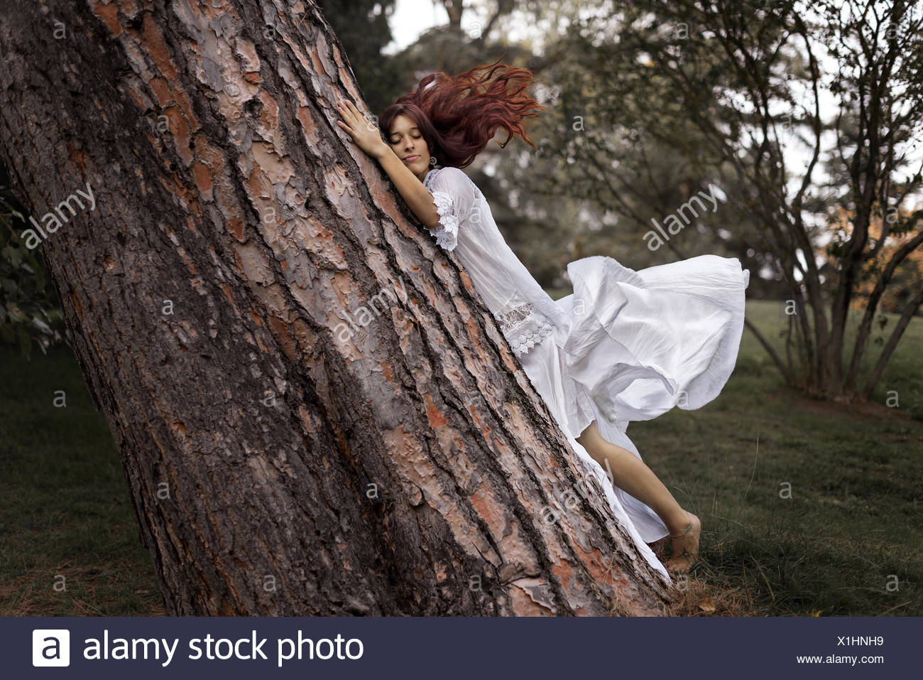 Young woman embracing tree Photo Stock
