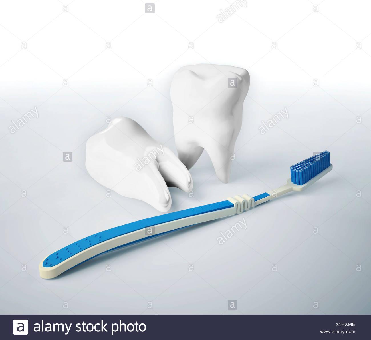 Soins dentaires, conceptual artwork Banque D Images, Photo Stock ... e2e664033fff