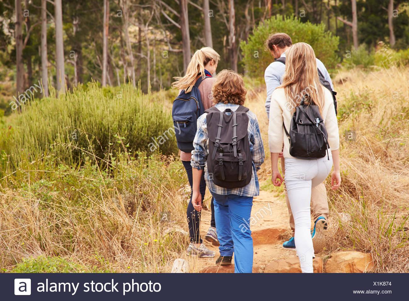 Balades en famille sur une piste dans une forêt, vue arrière Photo Stock