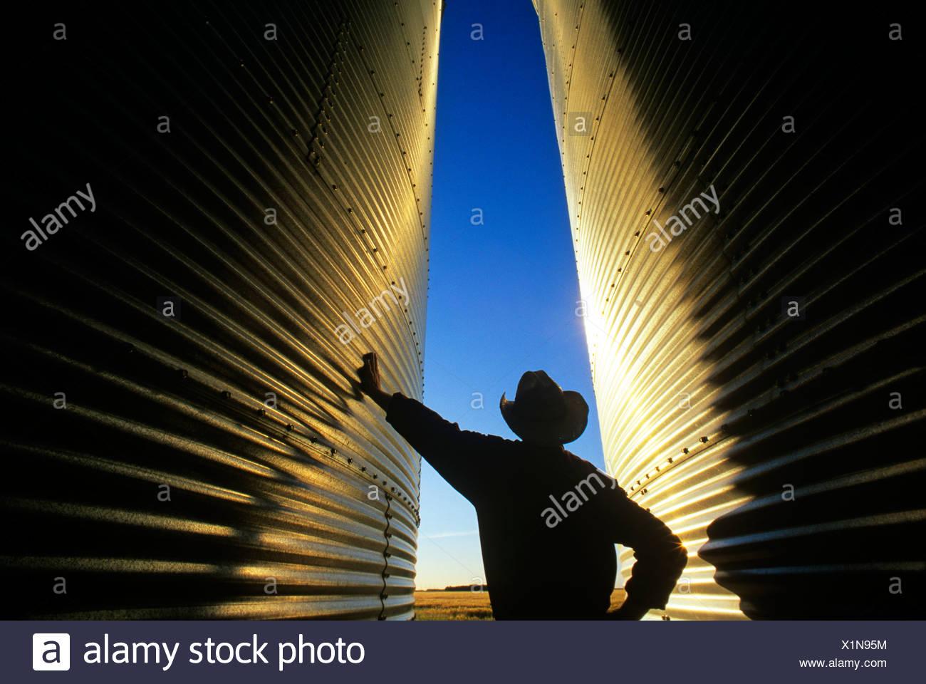 Un agriculteur donne sur son champ de ses bacs de stockage du grain au coucher du soleil près de Dugald (Manitoba), Canada Photo Stock