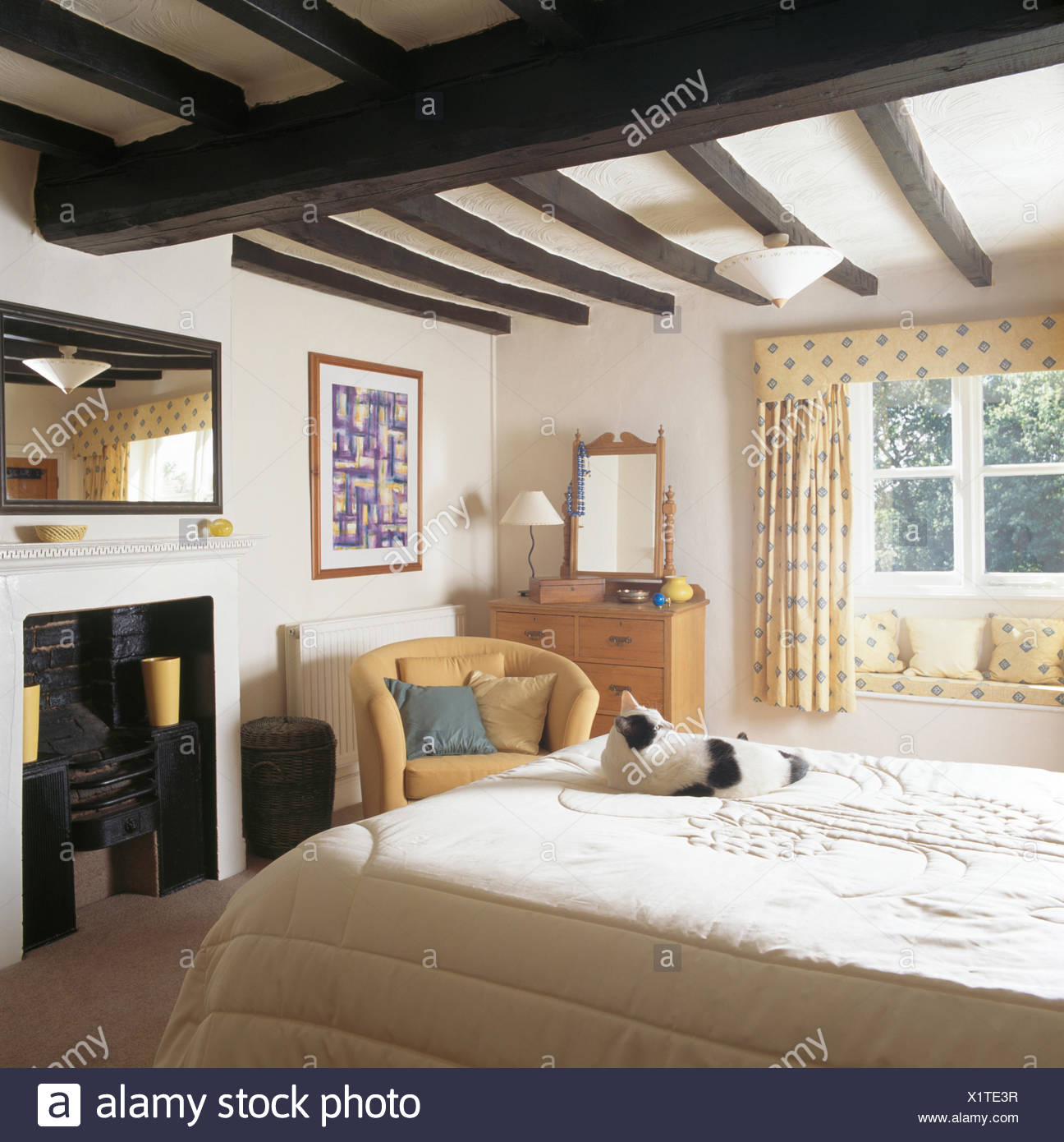 Noir +chat blanc, assis sur le lit dans un cottage chambre ...