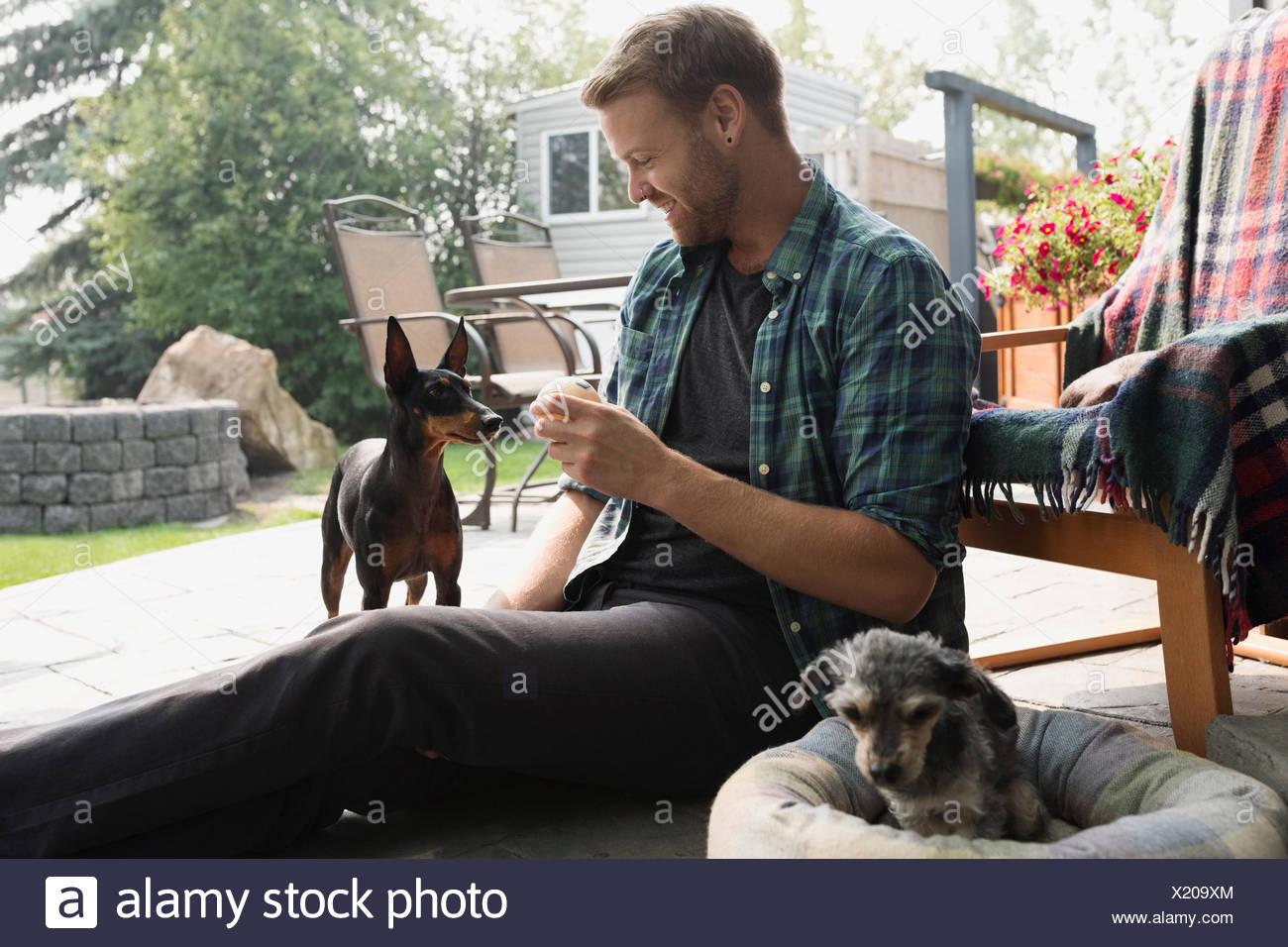 Man holding balle de tennis pour chien on patio Photo Stock
